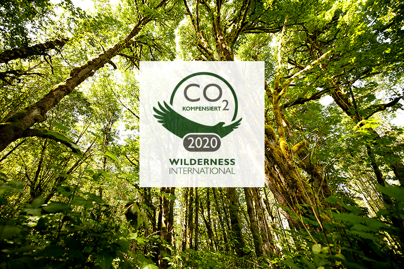 Wilderness International - Sami Fayed